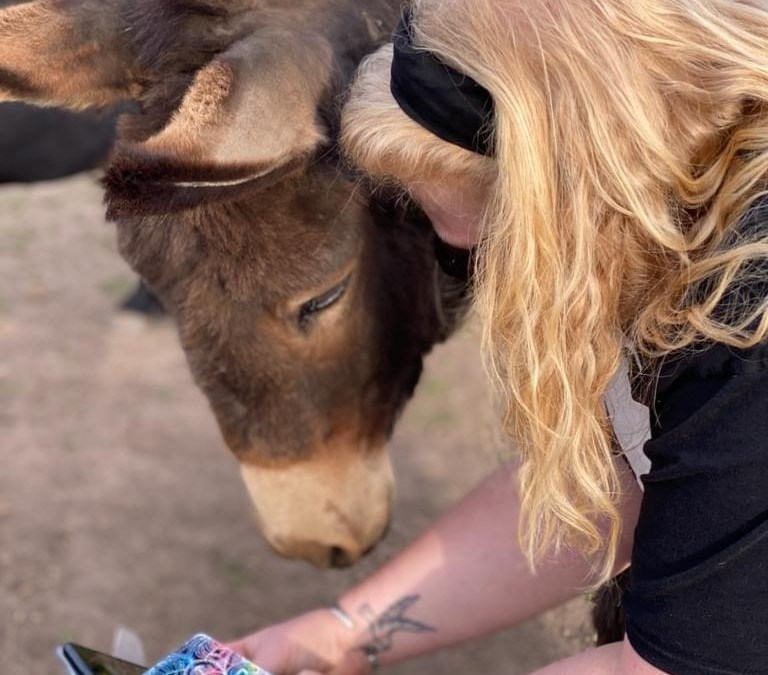 Disability and the power of animals.