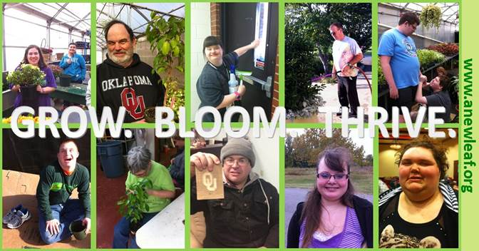 Image of 8 individuals in doing various activities with plants and horticulture. The text reads: GROW. BLOOM. THRIVE.