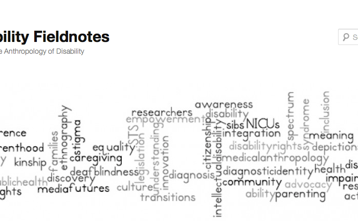 A screenshot from the Disability Fieldnotes website: http://disabilityfieldnotes.com There are various words arranged horizontally and vertically like a crossword puzzle.