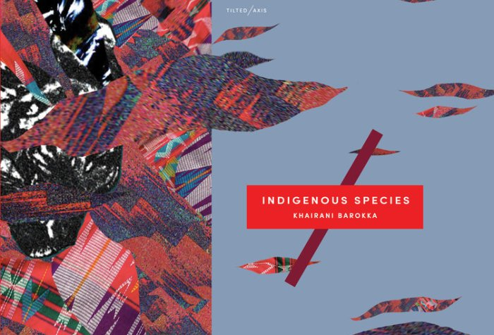 Image description: book cover featuring abstract artwork in with multiple colors, patterns, and shape. On the right-half of the image against a periwinkle blue background is the following text: Tilted/Axis, Indigenous Species, Khairani Barokka. Artwork by: Khairani Barokka
