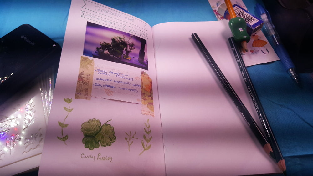 AeroGarden Journal Garden 1 Week 6 update: Blank Midori Travelers Notebook with a photo of the garden, a log entry and some drawings