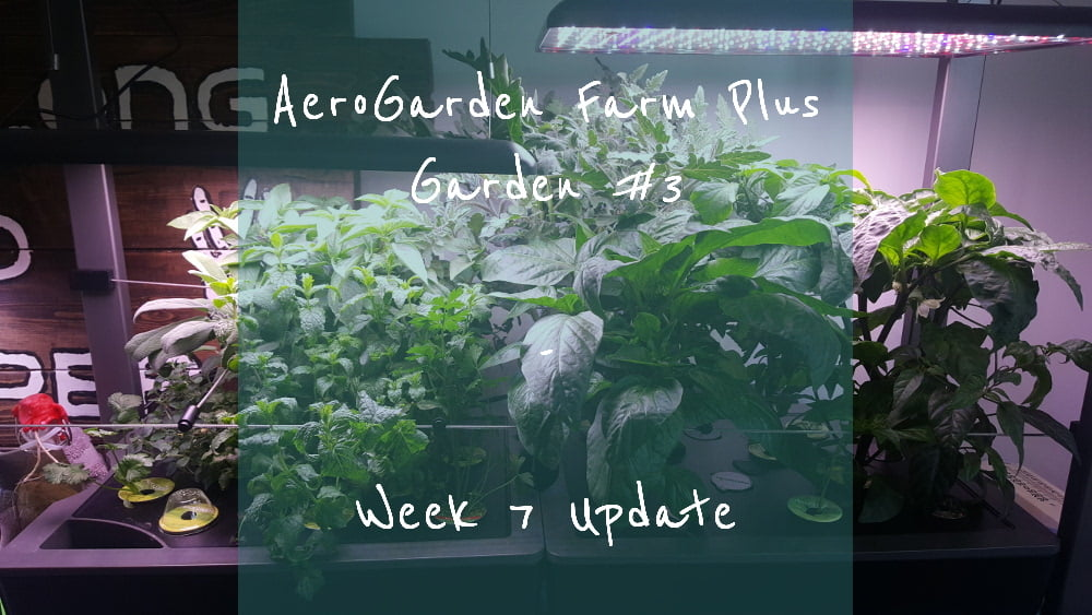 AeroGarden Farm Plus Week 7 title card