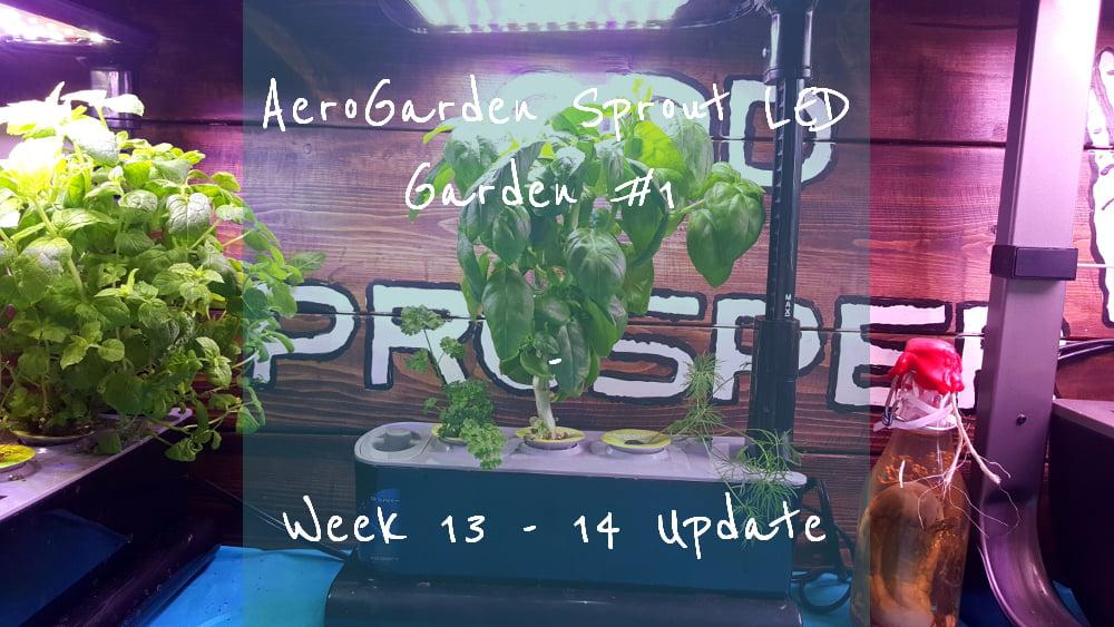 AeroGarden Sprout LED Garden 1 Week 13 – 14 title card