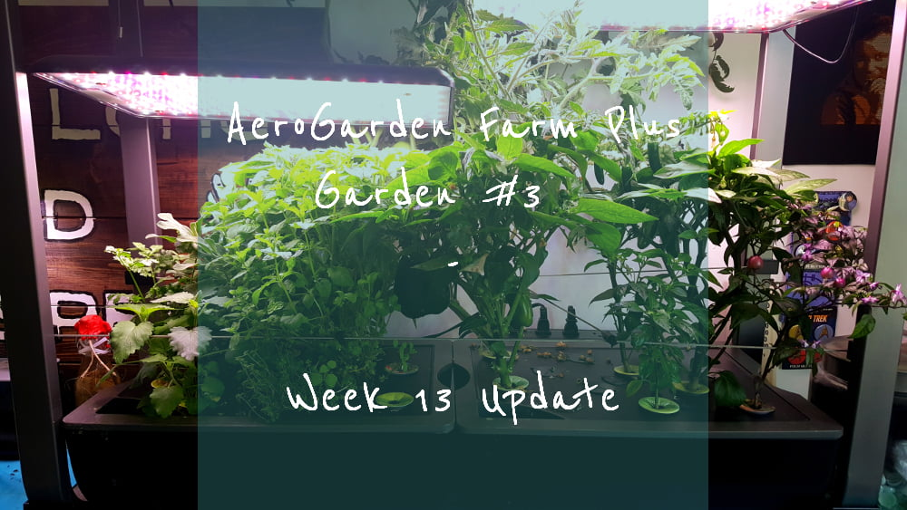 AeroGarden Farm Plus Week 13 title card