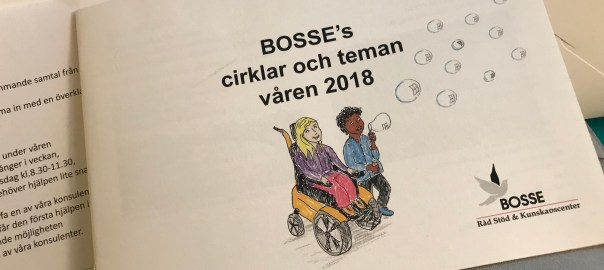 DRW meets BOSSE – advice, support and knowledge centre [BOSSE råd, stöd och kunskapscenter]