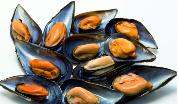 Half Shell Mussels
