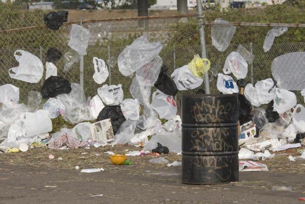plastic-bags_full_600