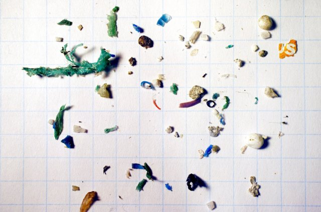 Microplastics smaller than 5mm recovered from the surface Mystic River, Boston, in September 2015. There is a high incidence of polystyrene. Image by Max Liboiron.