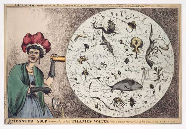 """Cartoon of a woman horrified by a microscopic view of drinking water from the Thames."""" Courtesy of the World Digital Library."""