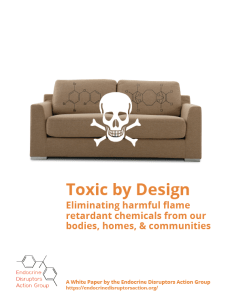 toxicbydesign-report-cover