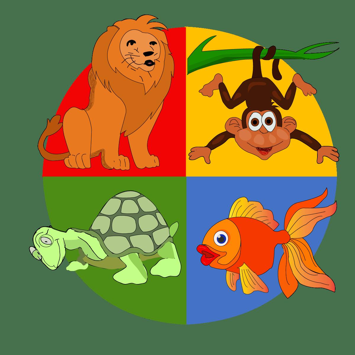 Turtle Disc Empower