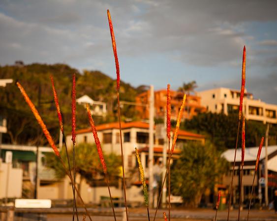 Jack Brown, by Deborah Redwood - Swell Sculpture Festival 2012, Dawn Visit; Currumbin, Gold Coast, Queensland, Australia; 21 September 2012. Photos by Des Thureson.