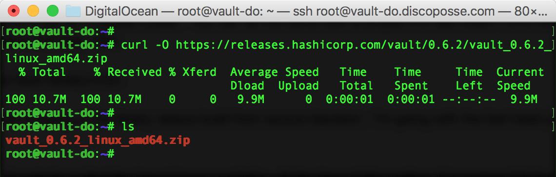 Installing Hashicorp Vault on Ubuntu 16 04 | DiscoPosse com