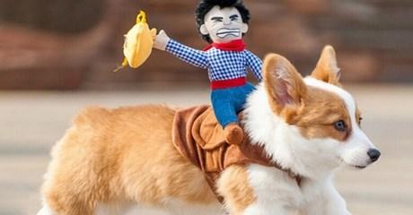 Riding Horse Dog Costume