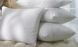 Hollow-Fibre Pillows