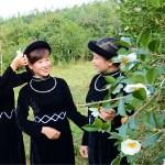 The So Flower festival 2016 at Binh Lieu District