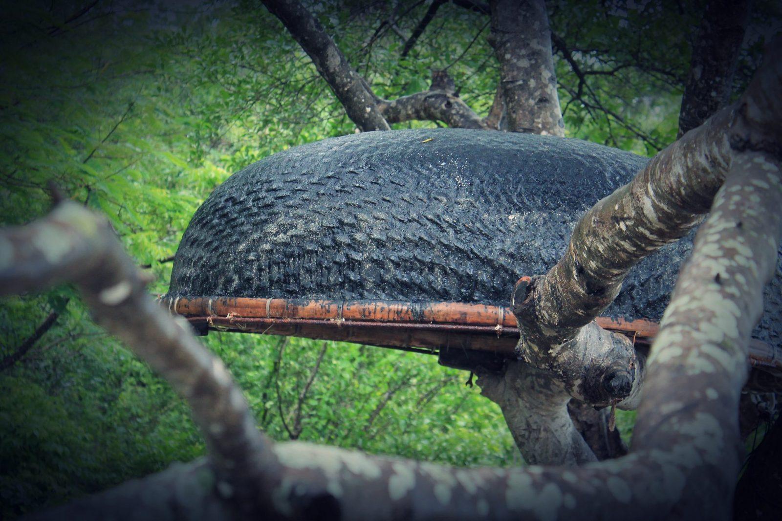 Basket Boats Vietnam-Discover Nha Trang