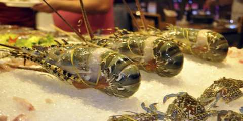 Zallo Seafood Barbecue Nha Trang