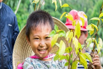 novotel-nha-trang-planting-day-3-featured1