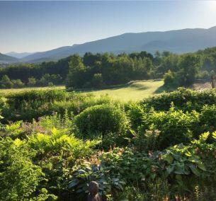 1 Garden and Mountain View