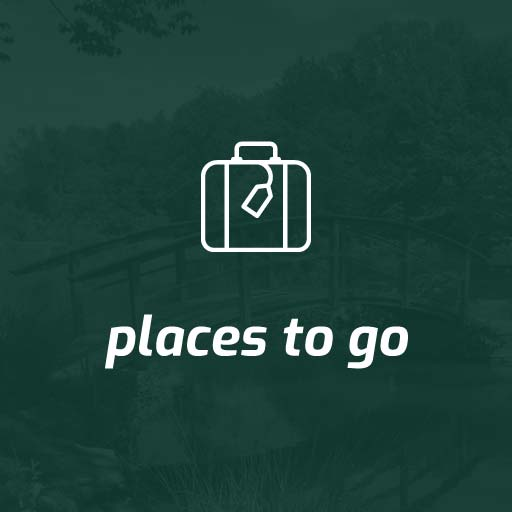 places to go button green with white text