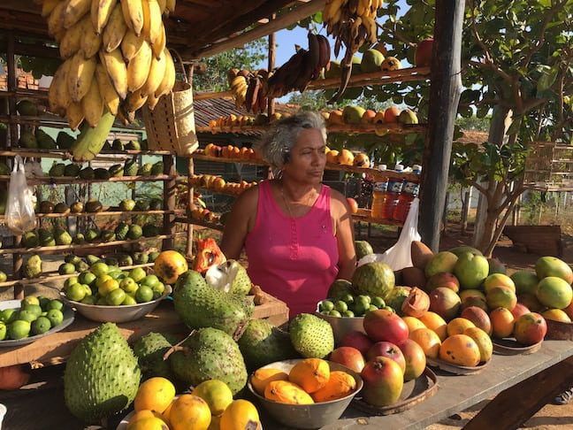 Volunteer Vacations in Cuba with Discover Corps