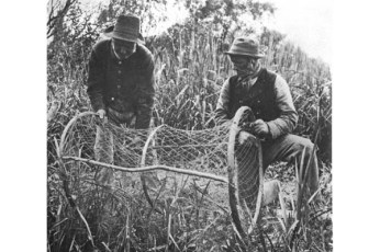 Setting up the bow net, P.H. Emerson, 1886