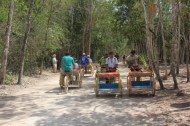 chofer driven tricycles are a good way to get around Coba's ruins