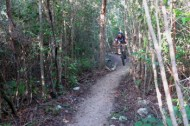 one of the easier jungle trails which has been graded. the more difficult trails are not graded and can be rough
