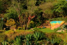 An ecological reserve in San Cristobal with a hiking path, orchid greenhouse, and variety of flora such as cactus, bromeliads and ferns.
