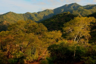 The Sierra Laguna's is a Unesco Global Biosphere Reserve found in Baja California Sur