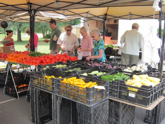 people shopping at farmers market