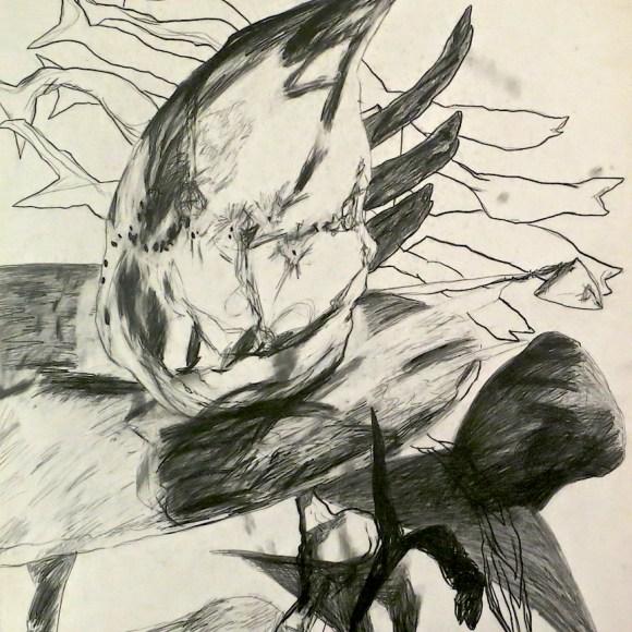 Early surrealism series: Salmon