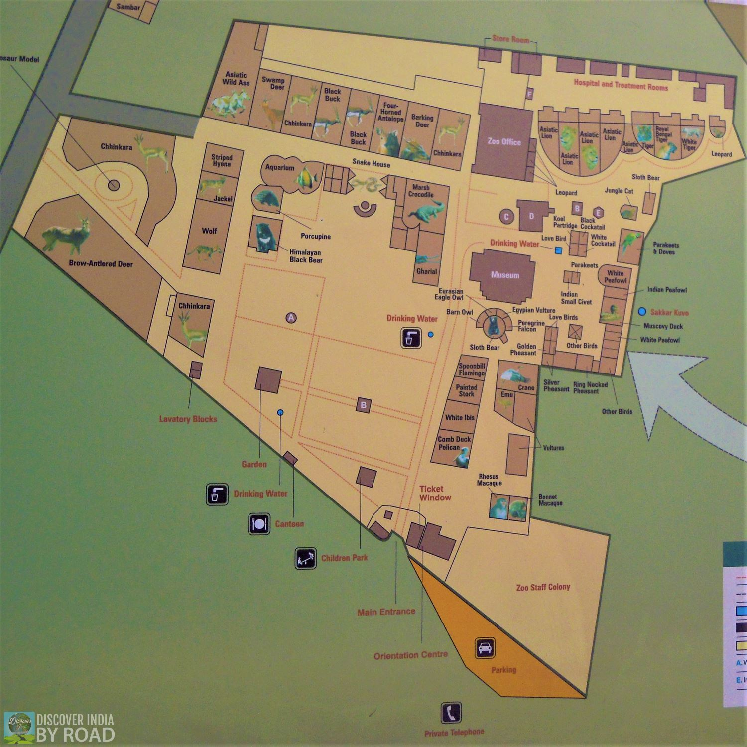 Zoo Map layout inside Museum