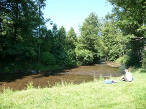 Picnic by an Ardennes river