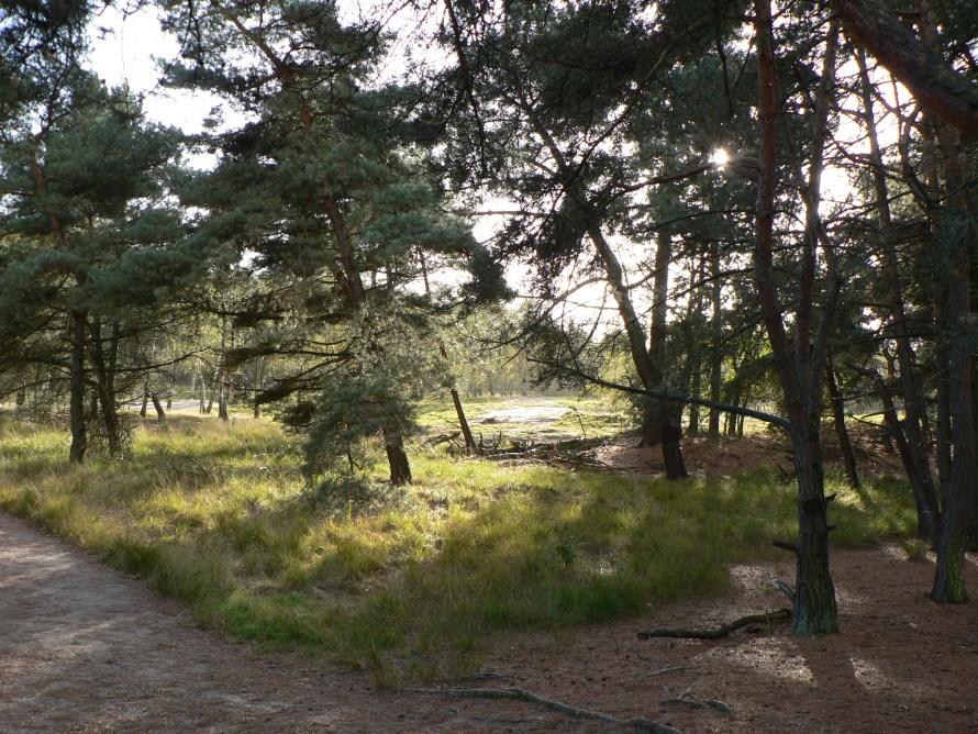Border Park De Zoom