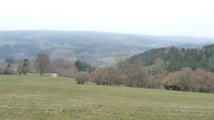 Looking towards La Gleize