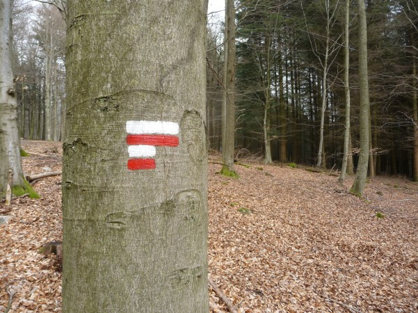 GR sign in the woods near Vielsalm