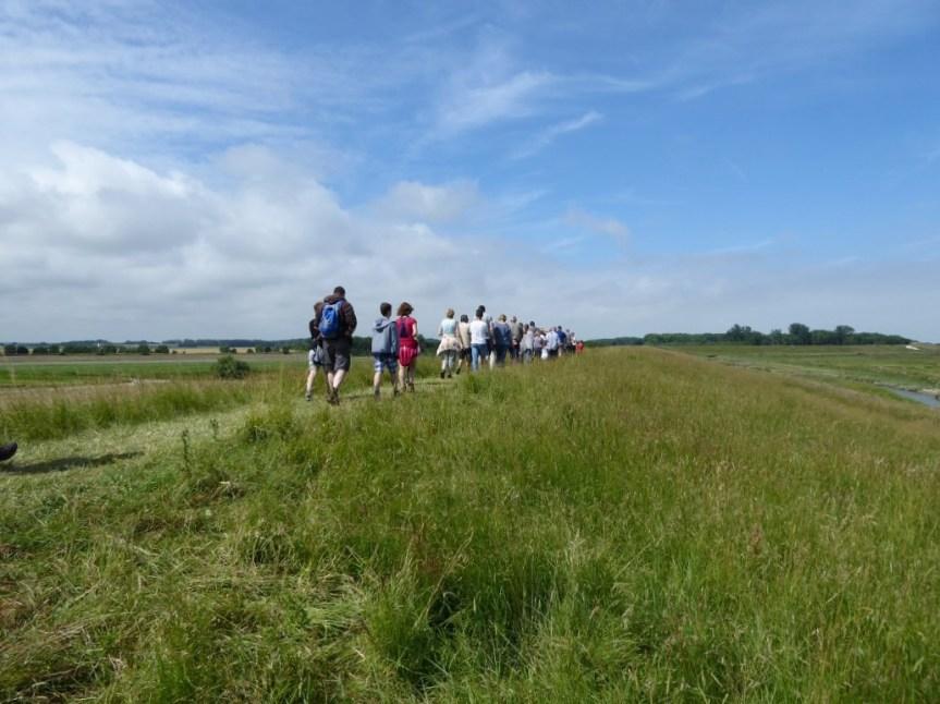 Walking in a group in Het Zwin Nature Park, Knokke-Heist, Belgium