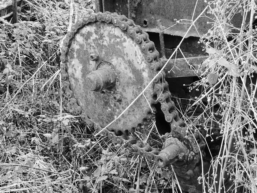 graveyard-22