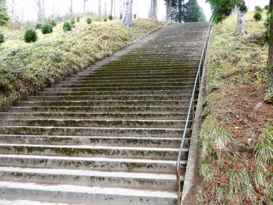 belvedere-steps