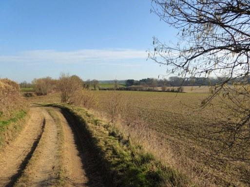 Nearby Tervuren
