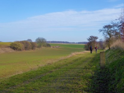 Walking from Tervuren to Bertem