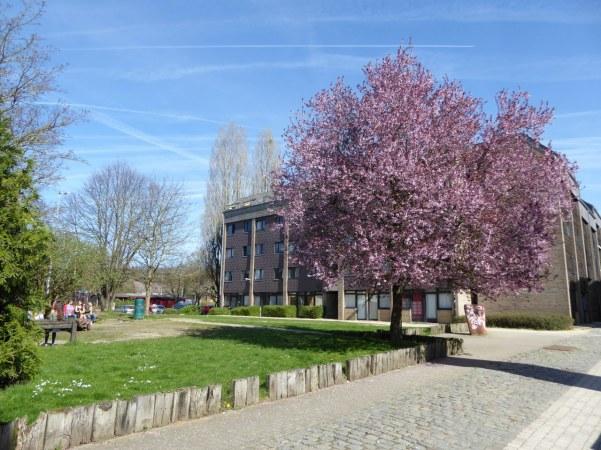 Université Catholique de Louvain (UCL)