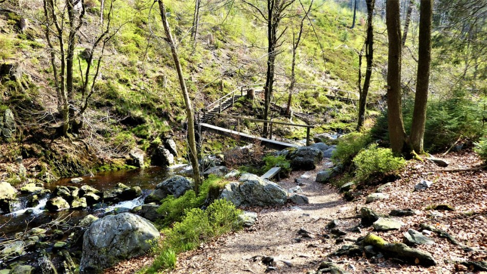Hoegne-valley (3)