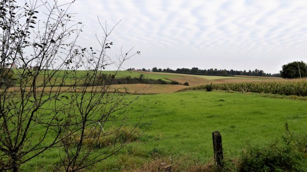 Overijse fields