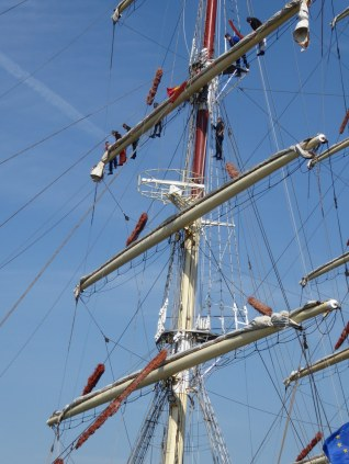 River Schelde ships in Antwerp
