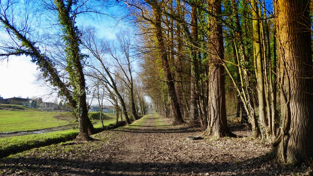 Walking around Orp-Jauche