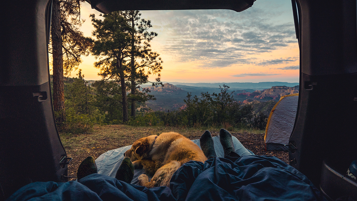 Campground Apps that You Should Know About