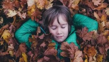 Five Senses Homeschool Preschool